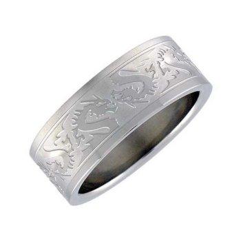 Chirurgickб ocel - prsten Drak - AKCE